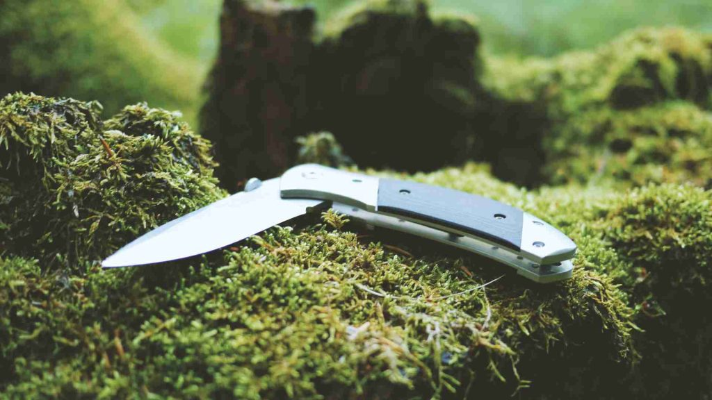 Best Survival Pocket Knives 2021: Reviews & Buyer's Guide